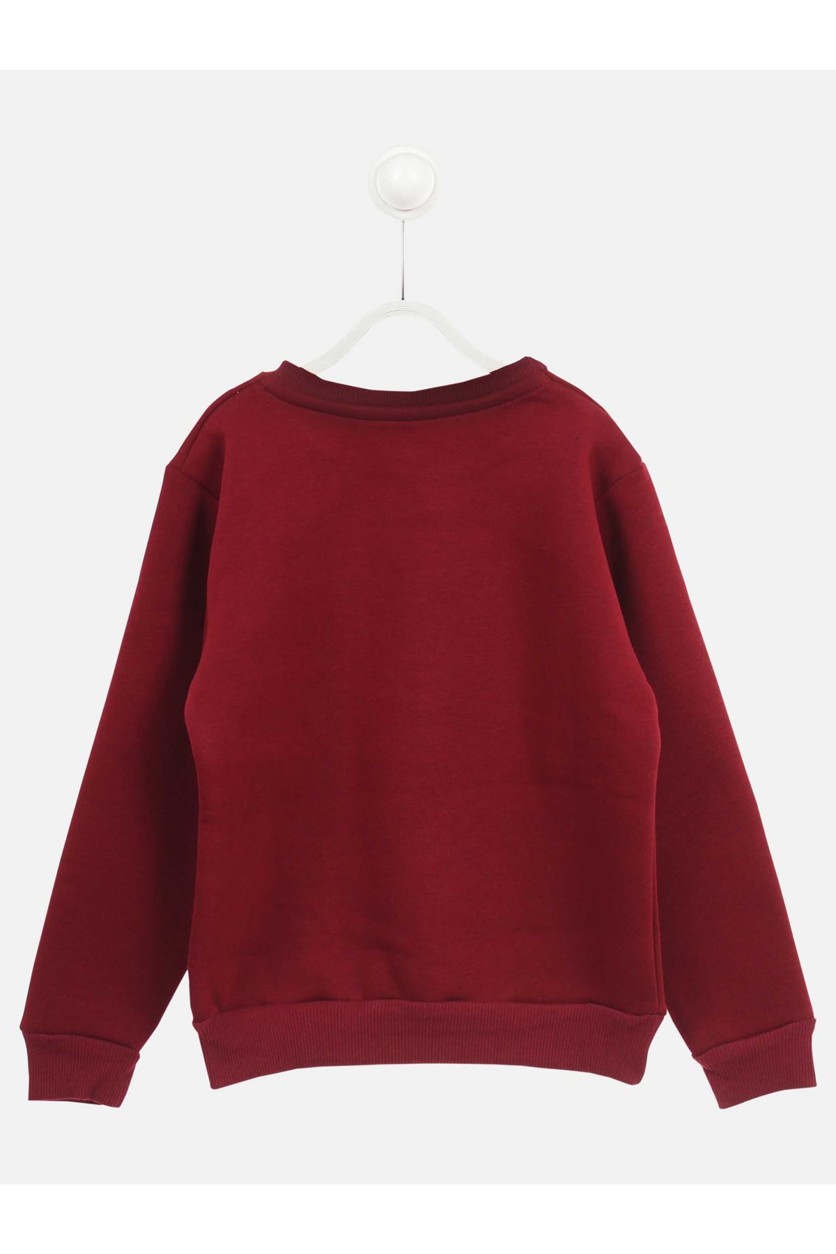 Burgundy Winter Male Child Sweatshirt