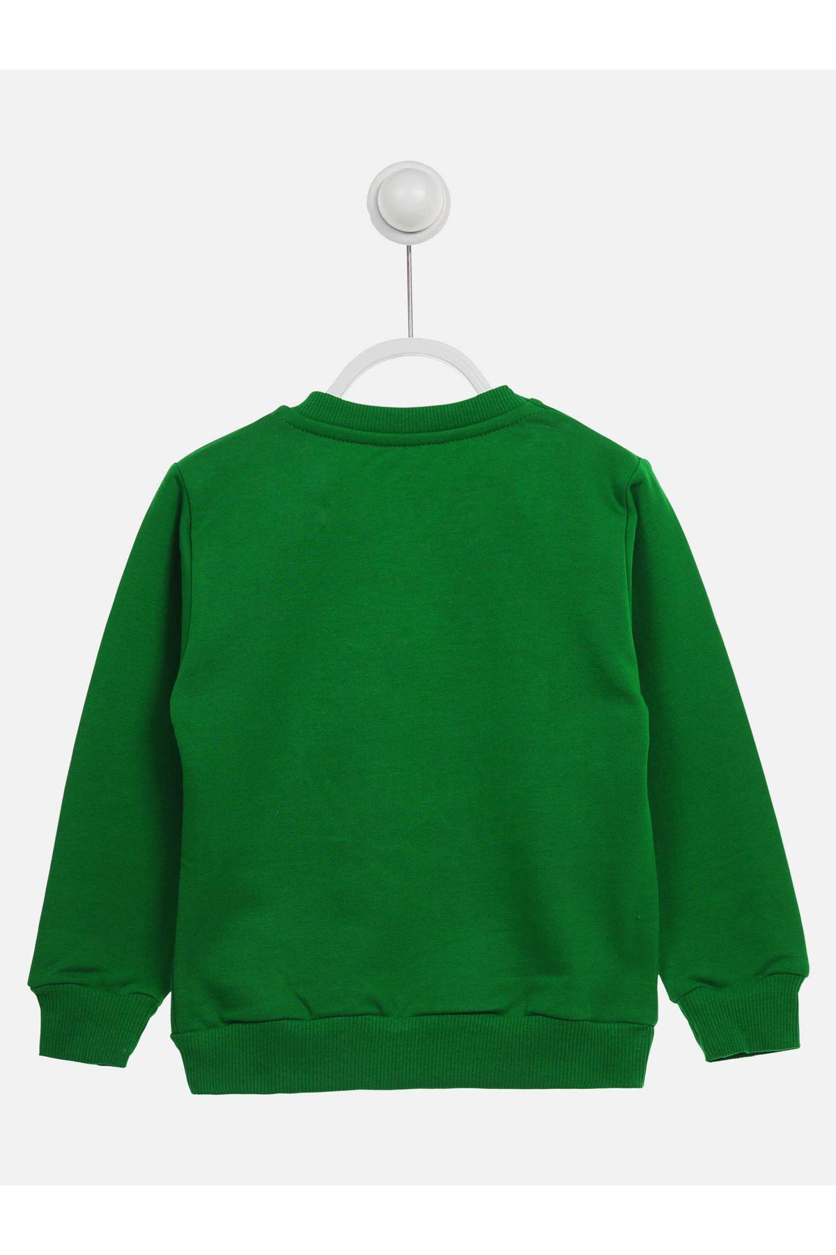 Yeşil Mevsimlik Erkek Çocuk Sweatshirt
