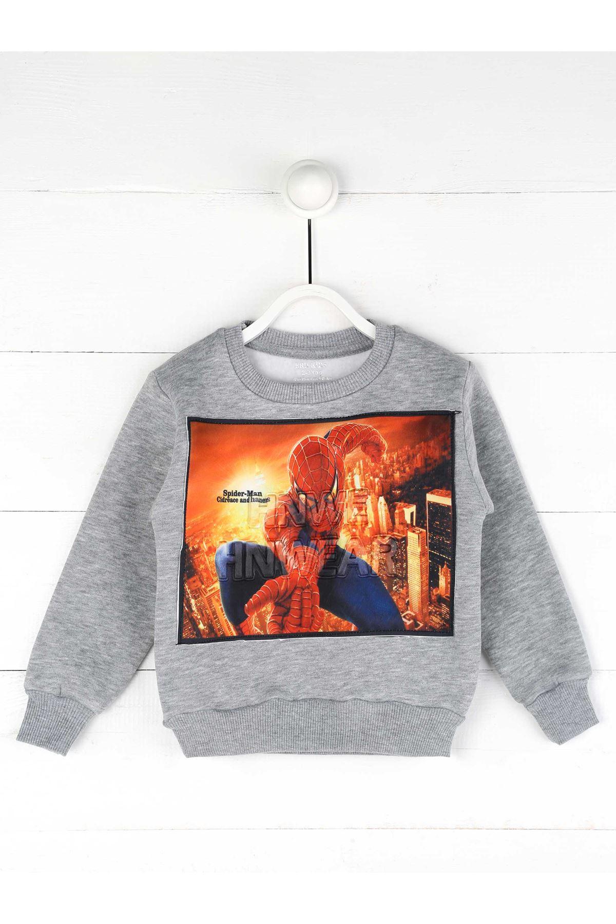 Gray Winter Boy Sweatshirt