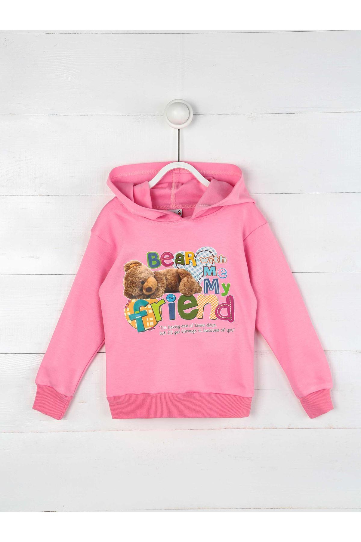 Pink Seasonal Hooded Girl Sweatshirt