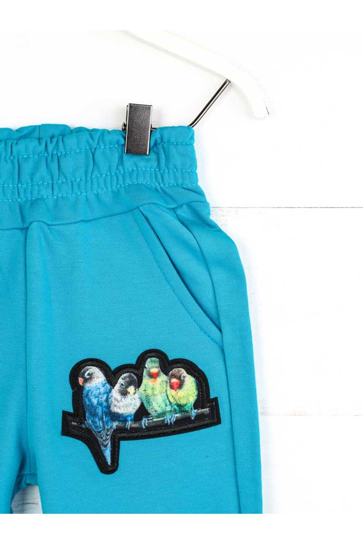 Seasonal Blue Girl's Trousers